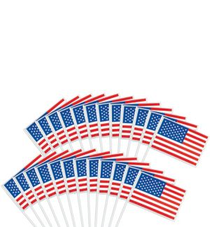 American Flags 48ct