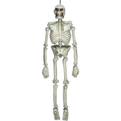 Hanging Plastic Skeleton