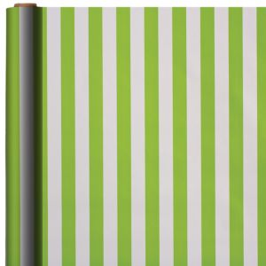 Jumbo Kiwi Striped Gift Wrap