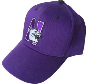 Northwestern Wildcats Baseball Hat