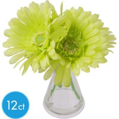 Green Gerbera Daisies in Vases 12ct