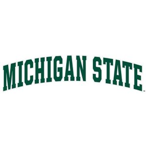 Michigan State Spartans Decal