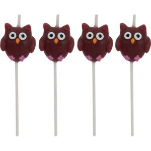 Owl Birthday Toothpick Candles 4ct