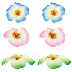 Hibiscus Clips 6ct