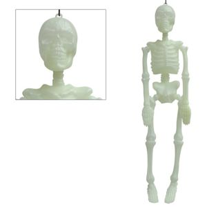 Glow-in-the-Dark Hanging Skeleton