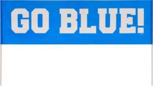 Go Blue Handheld Banner