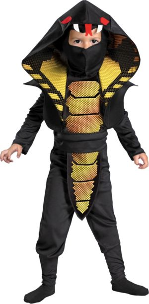Toddler Boys Cobra Ninja Costume