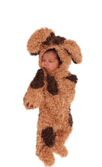 Baby Bently the Puppy Costume