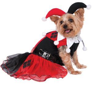 Harley Quinn Dog Costume - Batman
