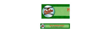 Baltimore Orioles Custom Banner 6ft