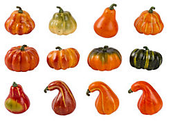 Bag of Gourds 12pc