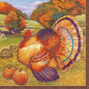 Festive Turkey Beverage Napkins 16ct