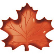 Small Leaf-Shaped Plastic Platter 9in x 10in