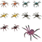 Spiders 48ct