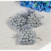 Silver Organza Wedding Favor Bags 24ct