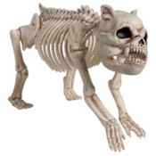 Poseable Hungry Hound Skeleton