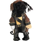 Pirate King Dog Costume
