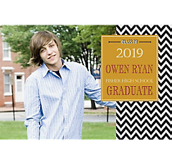 Custom Chevron and Matte Gold Photo Announcement