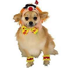 Cute Clown Dog Costume