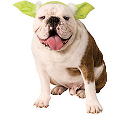 Yoda Ears Dog Hat - Star Wars