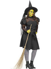 Adult Ms. Wicked Witch Costume Plus Size