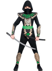 Boys Dragon Slayer Ninja Costume
