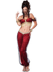 Adult Dreamy Genie Costume