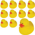 Rubber Ducks 24ct