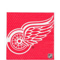 Detroit Red Wings Party Supplies