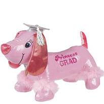 Princess Graduation Autograph Dog 14in with Pen