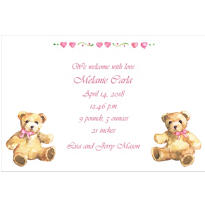 Teddy Bears with Pink Custom Birth Announcements