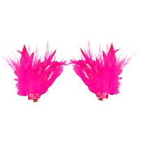 Pink Feather Shoe Clips