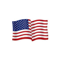 Glitter American Flag Decoration 21in