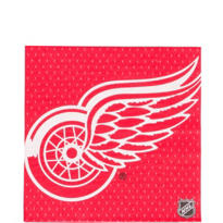 NHL Detroit Red Wings Party Supplies