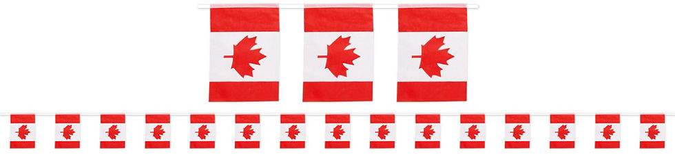 waving canadian flag party supplies party city canada