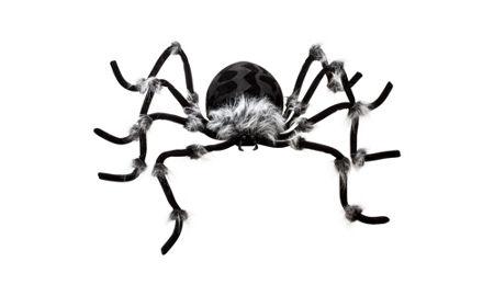 Halloween Spiders - Giant Spiders, Spider Webs & Spider ...