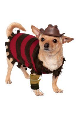 Freddy Krueger Dog Costume A Nightmare On Elm Street